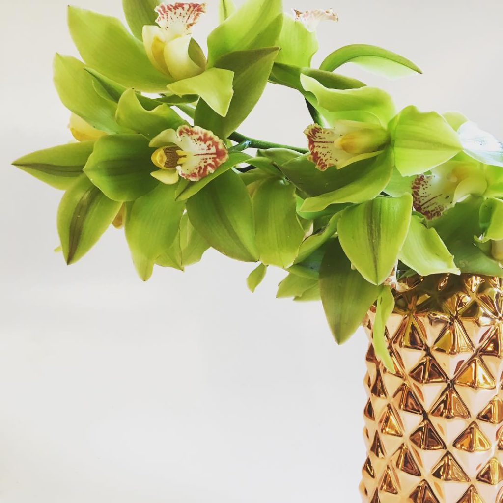 spectacular huge cymbidiumorchids in our copper pineapple vase  unexpectedhellip